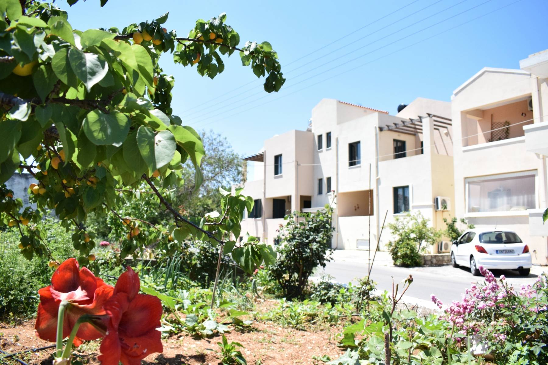 Apartment in Chorafakia