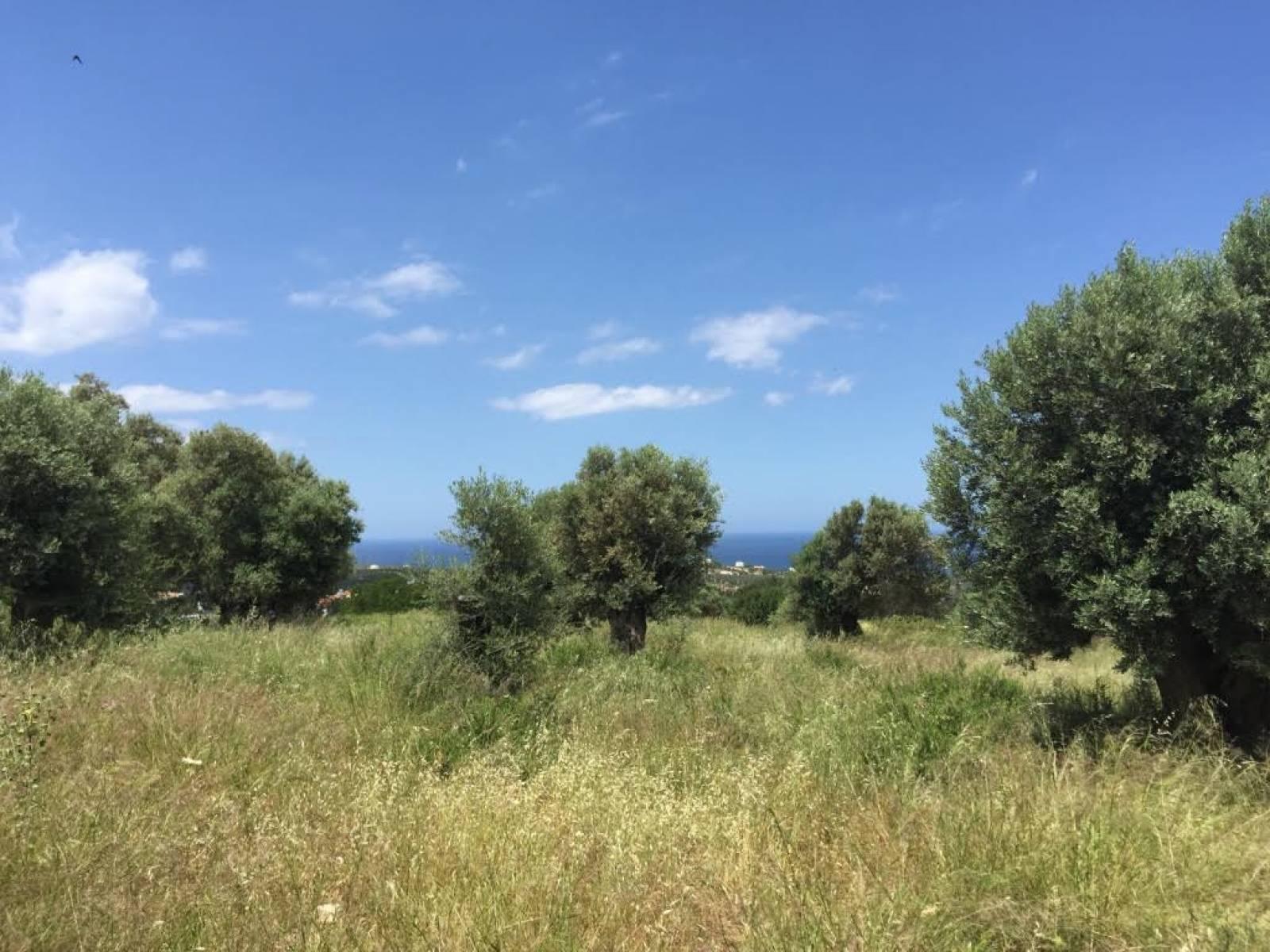 Agia Paraskevi plot with sea view