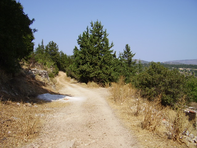 950-The-track-leads-to-the-mountains-Fres-Renovation-Sept-08-082